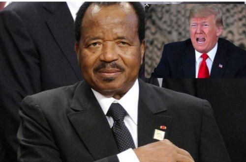 Article : Hypocrisie, larmes de crocodile des États-Unis et compagnie sur le conflit au Cameroun